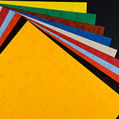 Dove trovare vinili autoadesivi in colori diversi per plotter