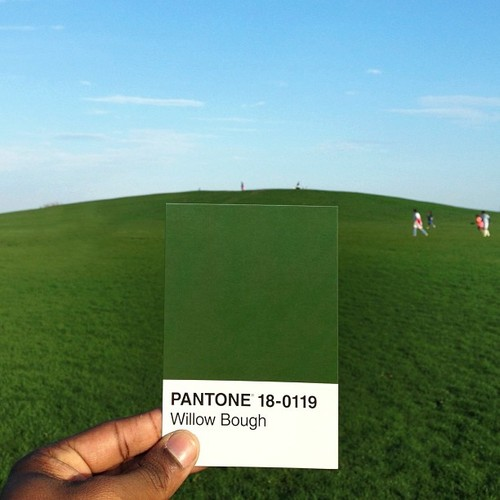 pantone project  paul octavious