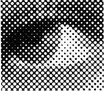 Pellicole serigrafiche e giusta frequenza del retino