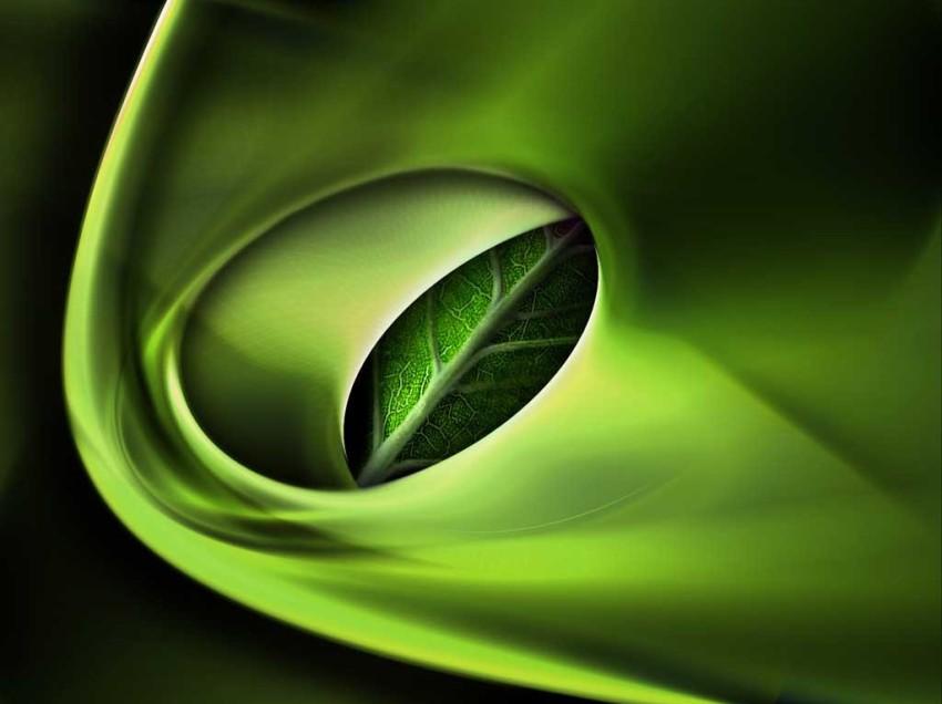 Nuovo inchiostro ecologico BioBase e smaltimento