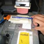 stampare su oggetti con la tampografia